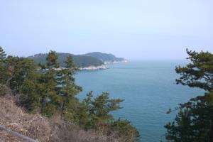 바다를 품은 동백 로드, 거제 장승포해안도로,경상남도 거제시