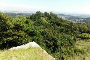삼국의 역사와 원효대사의 이야기가 숨어 있는 당성,경기도 화성시
