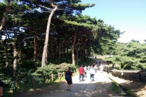 셋째 주 토요일, 성남 시티투어 - 도시락(樂) 버스 (남한산성, 신구대식물원, 판교박물관),경기도 성남시