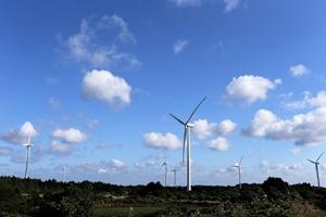 제주 최대규모의 풍력발전소, 삼달리 풍차, 국내여행, 여행정보