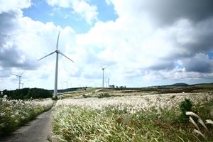 바람이 보이는 가시리 풍차 마을, 국내여행, 여행정보