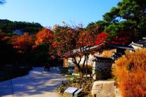조선 시대 옛 서울을 상기하다. 석파정, 국내여행, 여행정보
