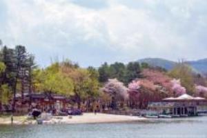 봄날의 색을 머금은, 남이섬의 봄,강원도 춘천시
