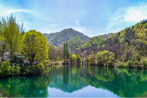 잠잠한 숲속의 공주시 명소. 불장골 저수지(송곡지), 국내여행, 여행정보