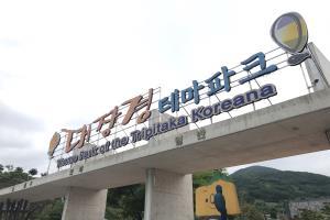 대장경테마파크에서 합천의 미래를 재조준하다, 국내여행, 여행정보