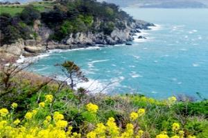 여수 앞바다에서 만난 꽃섬, 여수 하화도 꽃섬길,전라남도 여수시