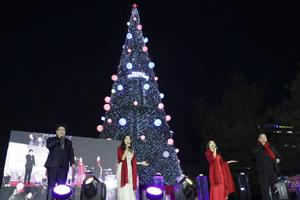 대전 서구 보라매공원 ′크리스마스트리 축제′오는 22일 점등, 국내여행, 여행정보
