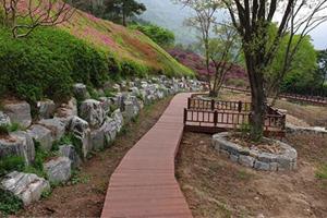 힐링 명소된 화순의 '수만리 생태숲 습지정원', 국내여행, 여행정보