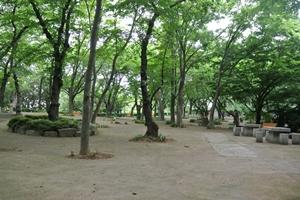 비장했던 전투의 현장에서 아름다운 공원으로 변신한 학성공원 탐방, 국내여행, 여행정보