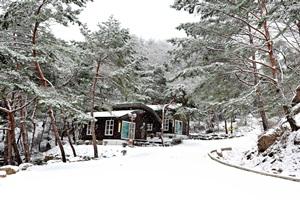 즐거운 명절, 가족나들이는 경북의 산림으로, 국내여행, 여행정보