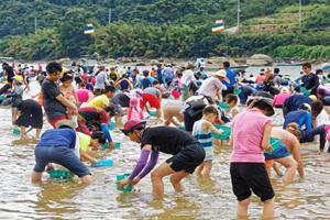 하동섬진강문화재첩축제 예비 문화관광축제 지정