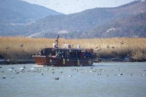 순천만습지 생태체험선 일출·일몰 선상투어 운영, 국내여행, 여행정보