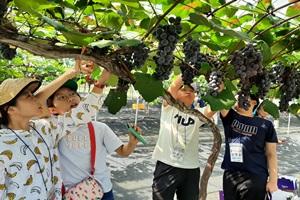 과일나라테마공원, 코로나19에도 자연 속 학습놀이터로 꾸준한 인기, 국내여행, 여행정보
