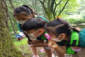 '자연관찰에서 체험까지 풍성'올 여름 공원에 다있다!