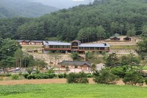 '대규모 힐링 숲'으로 탈바꿈한 금강송 군락지'미로면 활기리', 국내여행, 여행정보