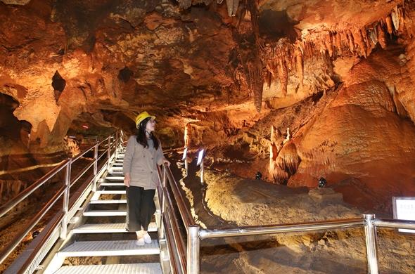 천곡황금박쥐동굴 내부 탐험 모습