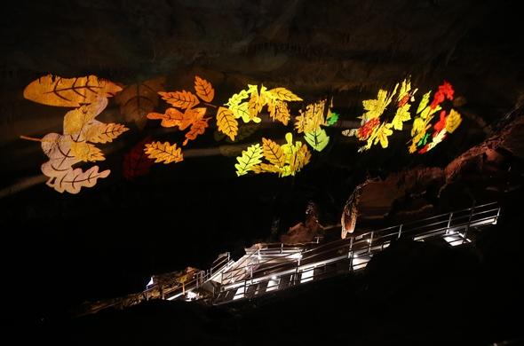 형형색색 빛으로 물든 천곡황금박쥐동굴