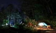 푸른 소나무와 신비로운 물안개, 청송부남오토캠핑장