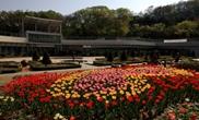 눈으로 보고 몸으로 느끼는 자연, 신구대식물원