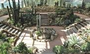 늦게 오는 만큼 충만한 봄, 양구생태식물원