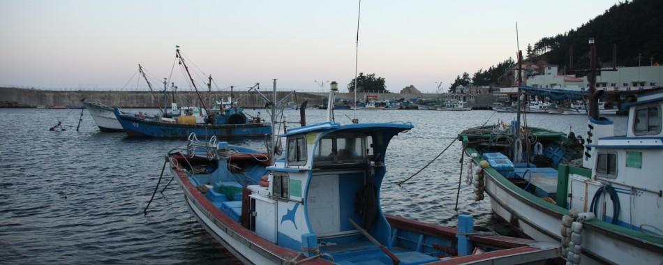 한국의 나폴리 장호항에서의 어촌체험