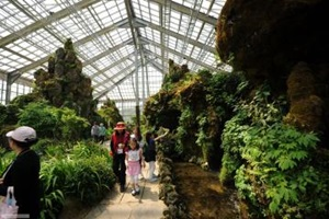 우리 꽃의 아름다움과 소중함, 화성시우리꽃식물원,경기도 화성시