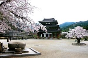 모악산으로 마실을 떠나다, '모악산 마실길',전라북도 김제시