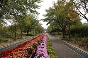 봄 마중하는 꽃과 나무 보러 가요, 강원도립화목원,강원도 춘천시