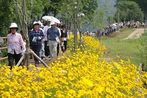 '금강로하스축제'로 떠나는 봄나들이,대전광역시 대덕구