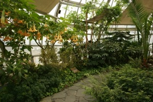 물 향기 따라 꽃 피는 수목원, 물향기수목원,경기도 오산시