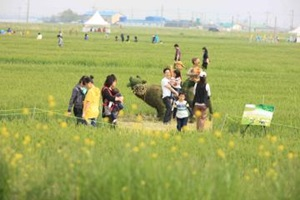 김제 지평선 추억의 보리밭 축제에서 봄빛을 만나다,전라북도 김제시