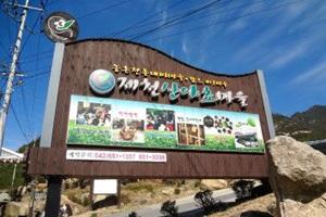 건강 찾아 떠나는 웰빙 여행, 제천 산야초마을