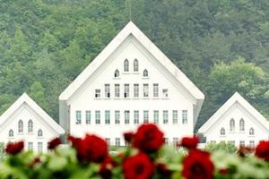볼 '꽃' 많은 정원, 조선대학교 장미원,광주광역시 동구