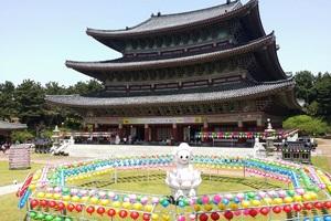 동양 최대 규모의 대적광전, 서귀포 약천사(藥泉寺),제주특별자치도 서귀포시