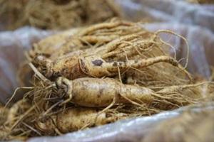 홍삼포크, 인삼과 돼지의 절묘한 만남!,국내여행,음식정보