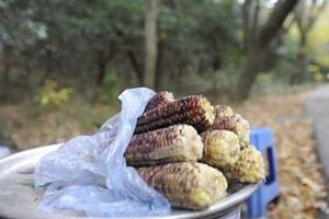 중앙시장에서 맛보는 홍천의 향토음식,국내여행,음식정보