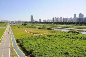 서울생태계 보고서, 양천구 안양천의 모든 것,서울특별시 양천구