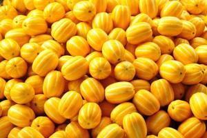 고운 노란빛을 뽐내다, 성주 참외,국내여행,음식정보