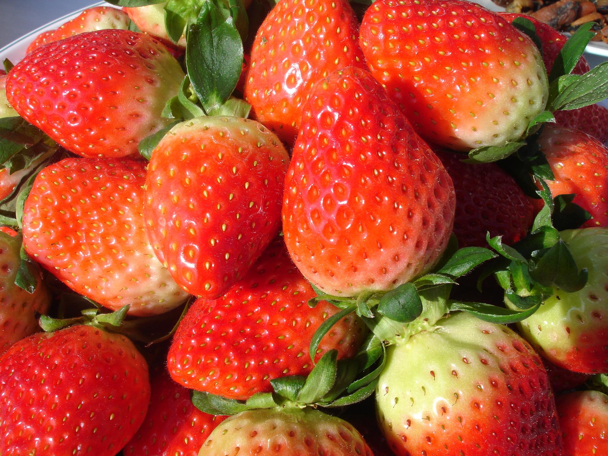 딸기,전라북도 남원시,지역특산물