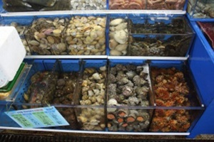해삼,국내여행,음식정보