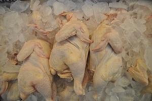 생닭,국내여행,음식정보