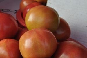 토마토,강원도 화천군,지역특산물