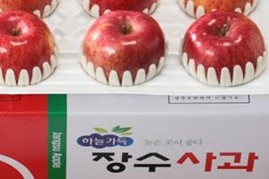 장수사과,전라북도 장수군,지역특산물
