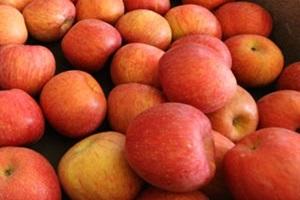 군위 사과,국내여행,음식정보