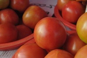 도태랑 토마토,국내여행,음식정보