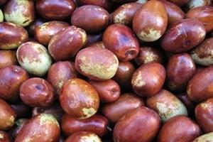 대추,전라북도 완주군,지역특산물