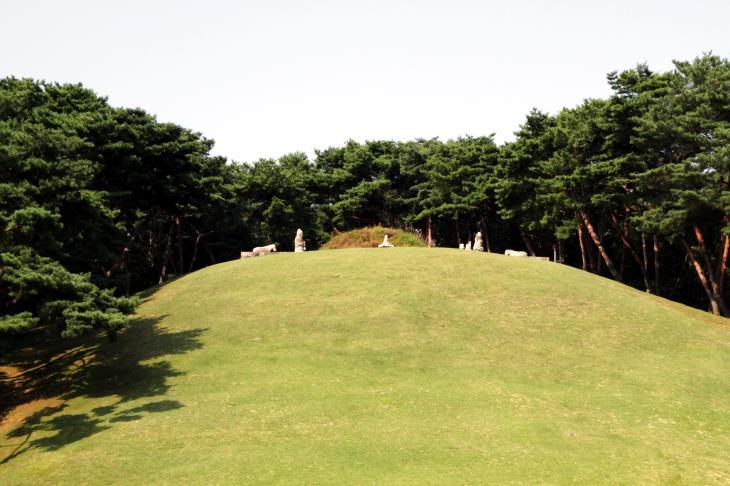 이곳은 조선왕조 500년 역사를 시작한태조 이성계가 잠든 건원릉이다